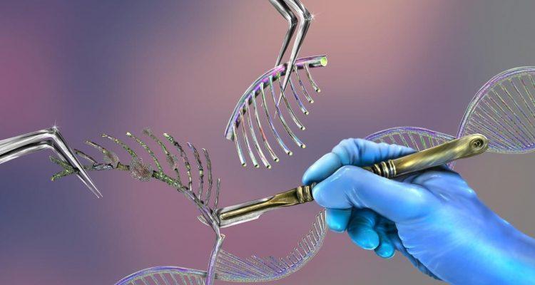 Établir la paternité légalement en recourant à un test ADN.